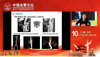 Endovascular Strategy to False Lumen Occlusion after Proximal TEVAR(SHI ZHENYU)